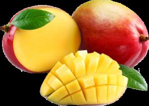 melhores suplementos de perda de peso são feitos com ingredientes como manga africana